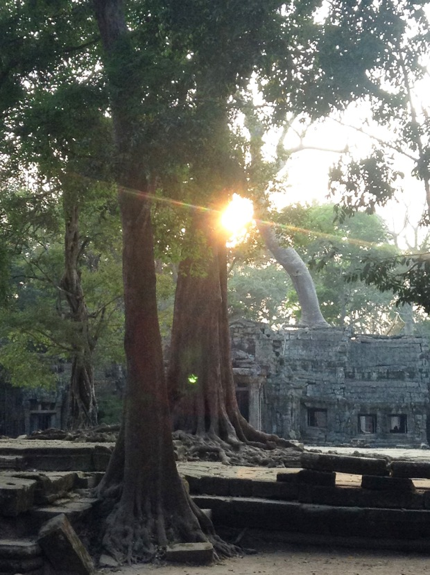 This is the entrance to Ta Prohm. The photo sucks. Even if it didn't, you have to be there as the sun sets to experience the colors (rather than just see them).